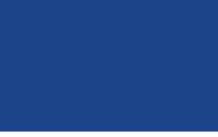 FICS-Logo
